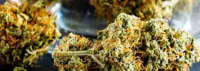 Vermont Draws One Step Closer to Legalizing Recreational Marijuana