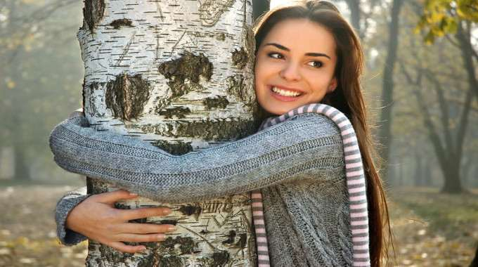 tree-hugger-compressed