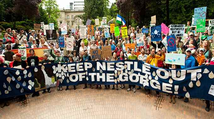 Keep Nestle Out-compressed (1)