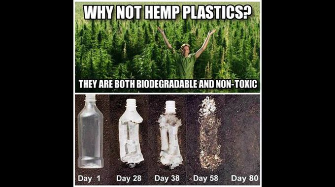 why not hemp plastics