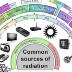 From Cell Phones to Microwaves: Are EMFs Really Dangerous?