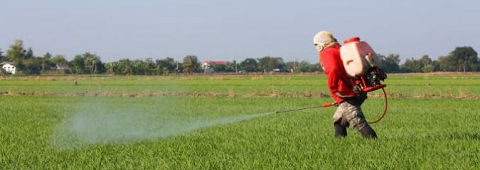 UN Experts Denounce 'Myth' That Pesticides are Necessary To Feed The World