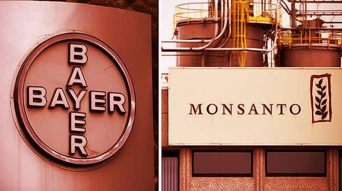 bayer-monsanto-compressed
