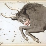 Horoscopes Tuesday 20th September 2016
