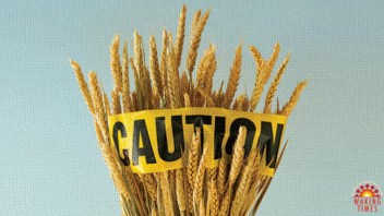 Identifying Triggers for Gluten Sensitivity
