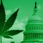 The High of 2016: Marijuana Legalization Quietly Goes Global