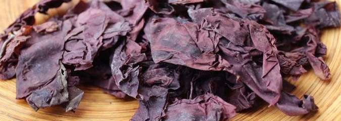Researchers Discover New Seaweed Superfood: 'Tastes Like Bacon' and Is Healthier Than Kale