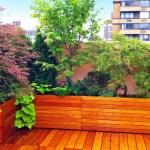 How To Create a Beautiful, Healing Garden