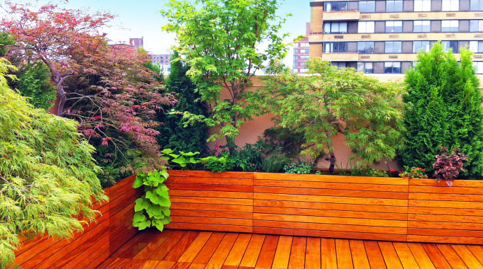 How To Create a Beautiful, Healing Garden : Conscious Life News