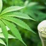 5 Benefits of Juicing Cannabis You Probably Don't Know About