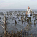 The Forgotten Island Destroyed by the Gulf Oil Spill