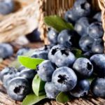 Blueberries Give Your Brain a Boost + Blueberry Superfood Smoothie Recipe