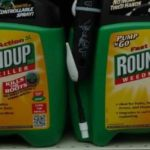 12 Reasons Why Even Low Levels of Glyphosate Are Unsafe