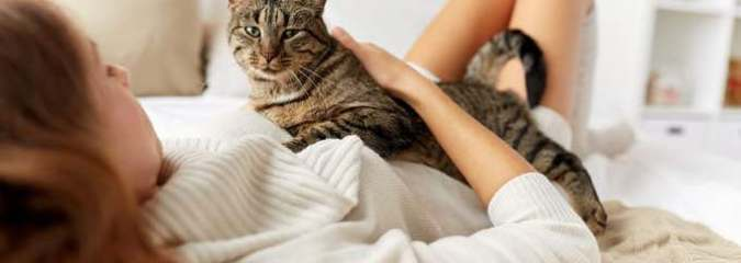 Scientifically Proven Ways That Living With Cats Enriches the Human Body and Mind