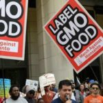 'A Disaster': Critics Pounce on USDA's New GMO Labeling Rule: It's Intended to Hide, NOT Disclose, Info About GMOs