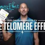 """Want to Prolong Your LIfespan? Watch This Summary of """"The Telomere Effect"""""""