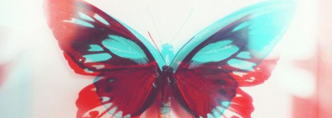 The Gift of Growth & Manifesting Your Own Metamorphosis