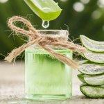 5 Benefits of Aloe Vera Juice   Dr. Joseph Mercola