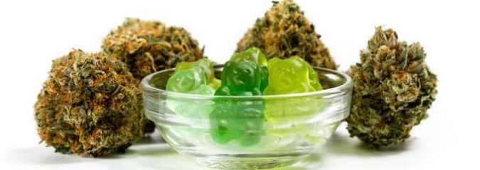 State by State Guide Discussing the Legalities of CBD Gummies