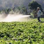 Study Finds That 64% of the World's Farmland at Risk From Pesticide Pollution