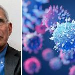 New Documents Show Fauci LIED to Congress: His Organization DID FUND Fund Gain-of-Function Research at the Wuhan Institute of Virology