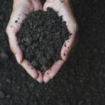 From Soil to Society: A Systems Approach to Change