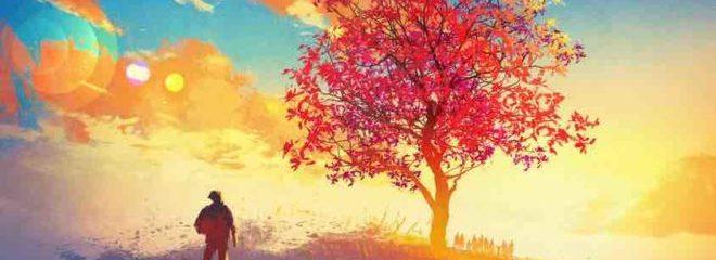 How to Live Free, Despite the Circumstances