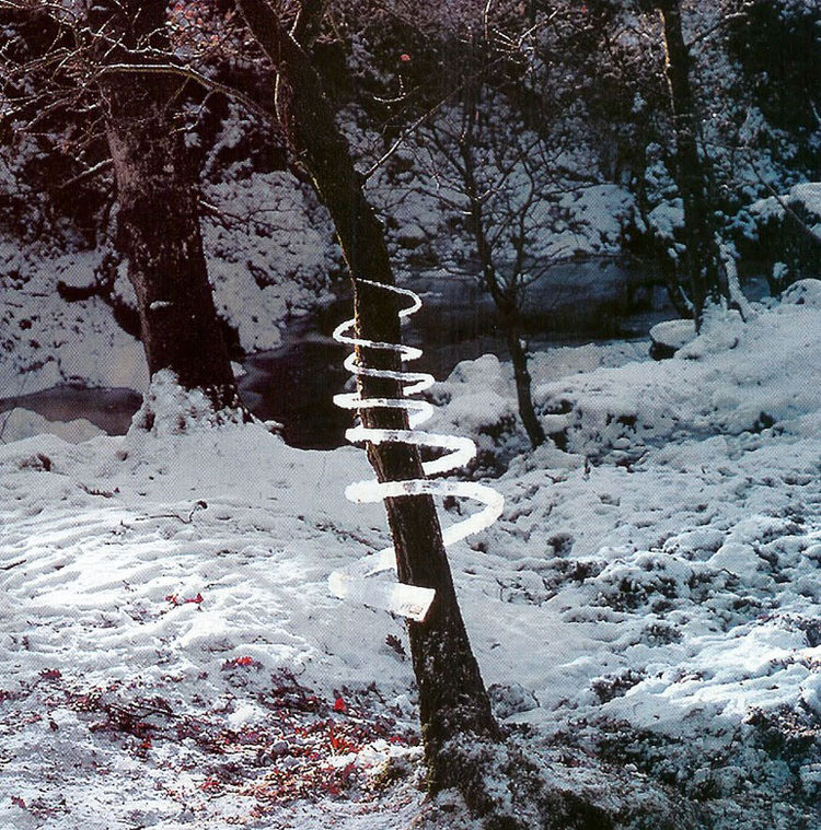 Rivers and Tides-andy-goldsworthy-8