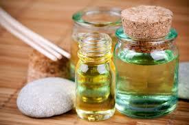 Los aceites esenciales han sido usados a través de la historia por los egipcios, los persas, los franceses y hasta la Biblia hace mención de ellos.