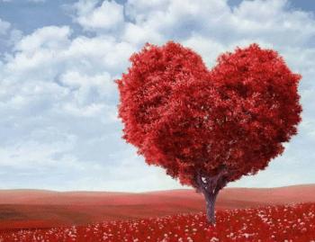 arbol-corazon