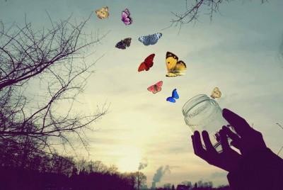 mariposas-libres