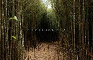 RESILIENCIA: LA ADVERSIDAD ME HACE MÁS FUERTE