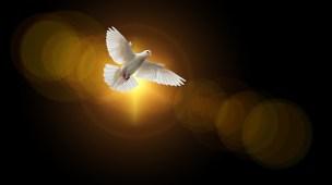 Quem é o Espírito Santo pra você - Conselheiro Cristão