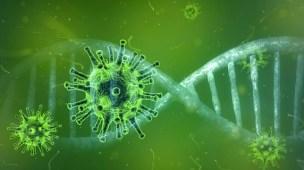 Corona Vírus em Wuhan na China se Espalha