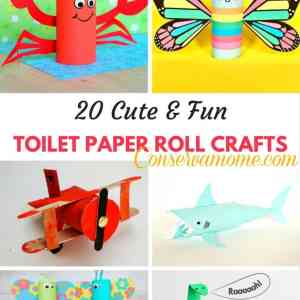 20 Cute & Fun Toilet Paper Roll Crafts