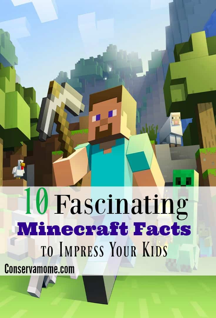 Minecraft Facts