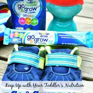 Keep Up with Your Toddler's Nutrition with Go & Grow Toddler by Similiac
