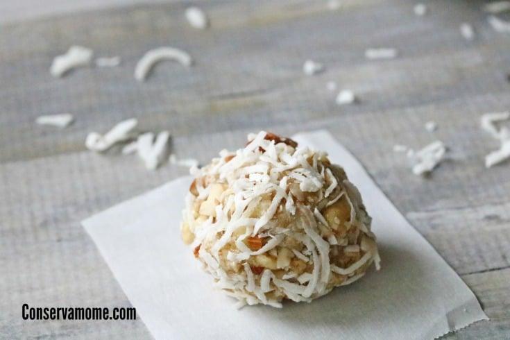 Almond Coconut Protein Balls