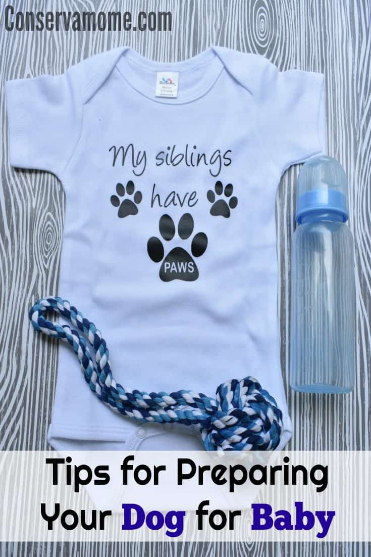 Tips for Preparing Your Dog for baby