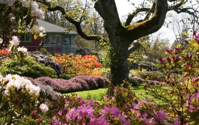 Abkhazi-Garden-from-summerhouse-1240x700