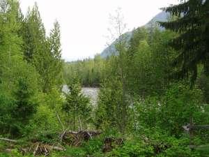Little Slocan River