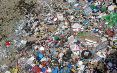 Media release: 'Smart bins' dumb idea if they only do waste to landfill
