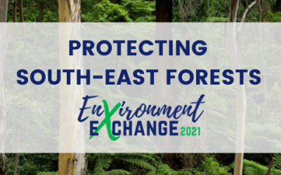 Environment Exchange: Protecting the south-east forests of NSW