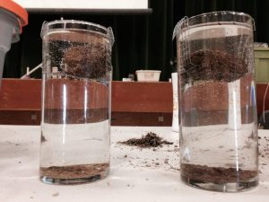 Investigate the fascinating world of soils.