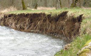 Are you struggling with erosion along your creek or stream? We can help!