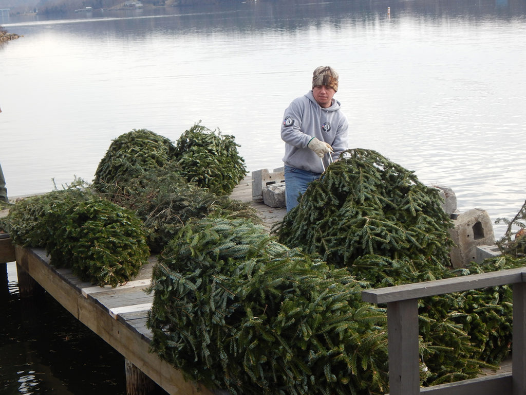 christmas trees for fish habitat - How To Water A Christmas Tree