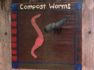 The soil food web includes our friends the worms.