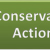 ConservationActions-featured