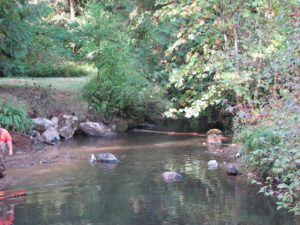 Fish-bearing streams are sensitive to run-off from agricultural properties AND domestic residences.