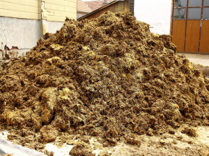 Manure piles can grow quickly